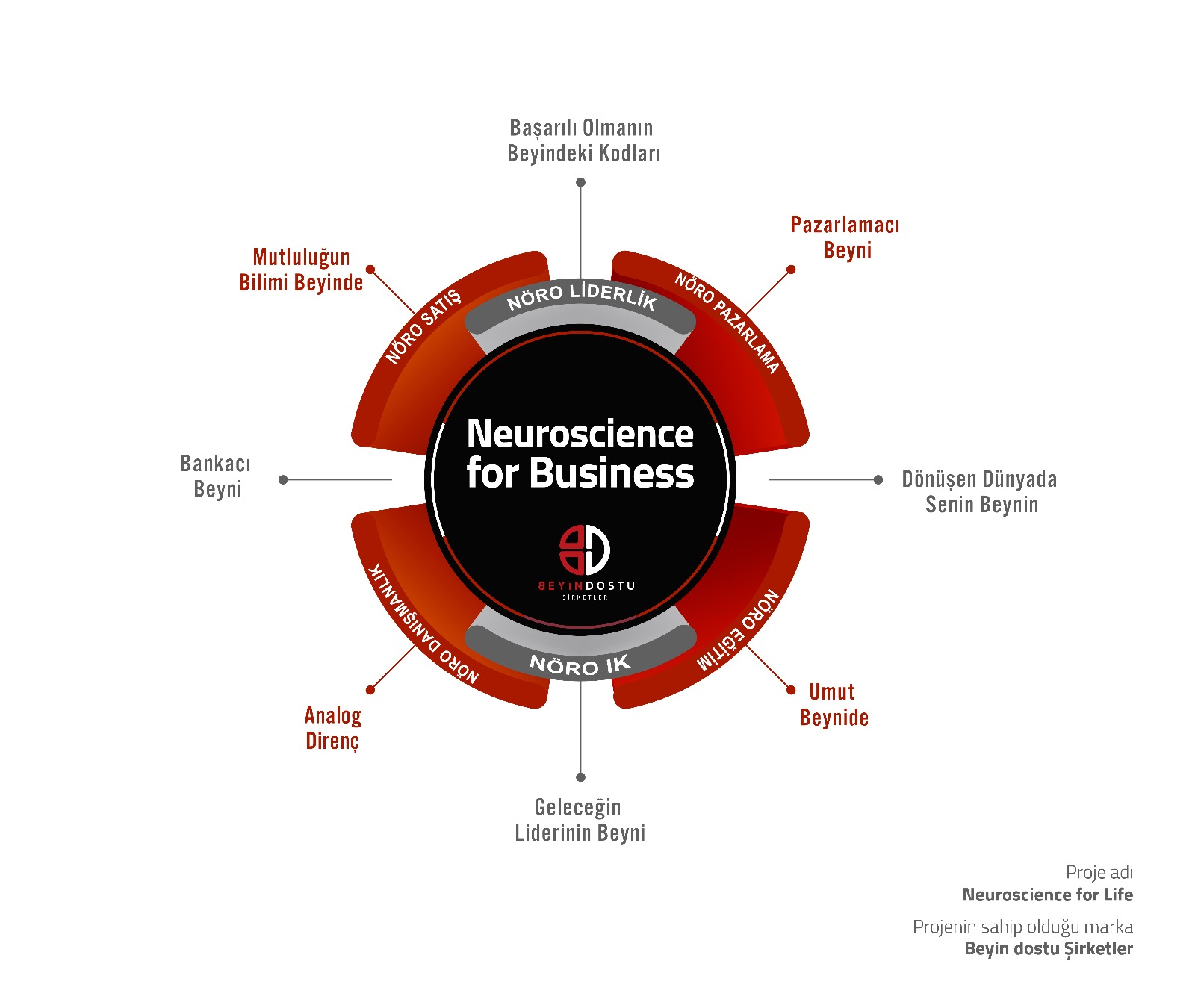 Neuroscience-For-Business