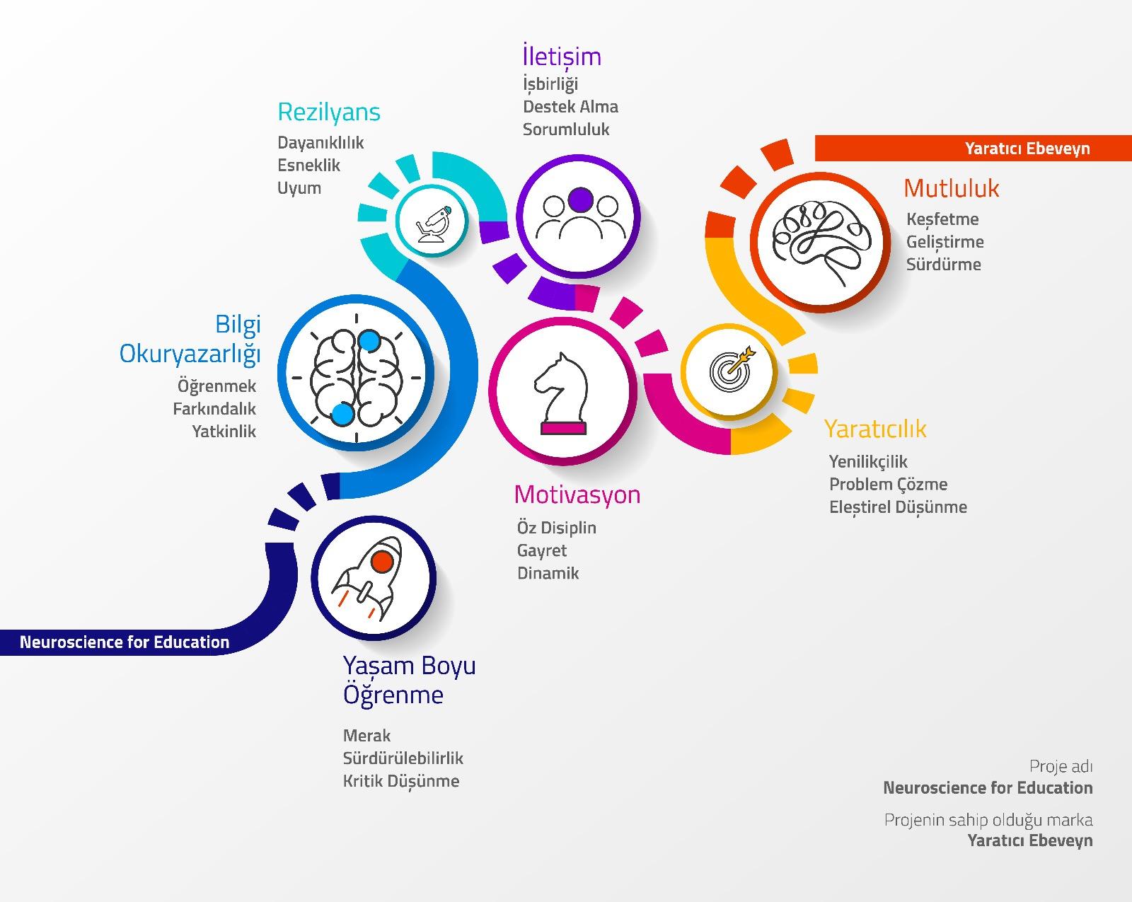 NeuroscienceFor-Education